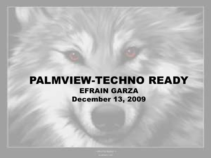 PALMVIEW-TECHNO READY<br />EFRAIN GARZA<br />December 13, 2009<br />