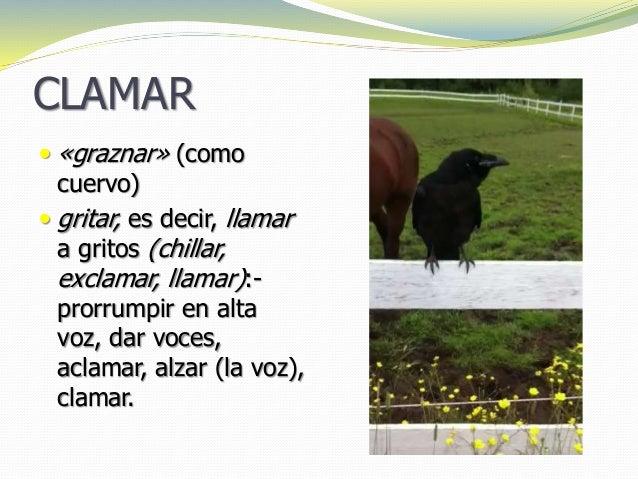 CLAMAR  «graznar» (como cuervo)  gritar, es decir, llamar a gritos (chillar, exclamar, llamar):- prorrumpir en alta voz,...