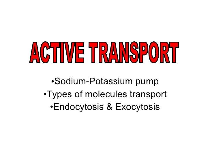 <ul><li>Sodium-Potassium pump </li></ul><ul><li>Types of molecules transport </li></ul><ul><li>Endocytosis & Exocytosis </...