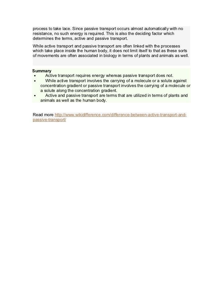 Essay on Transportation Writing Help