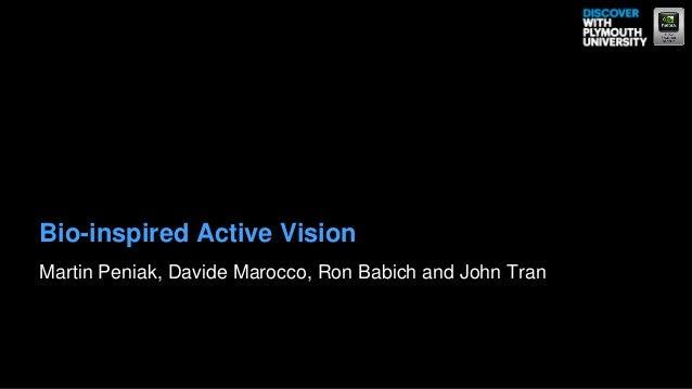 Bio-inspired Active VisionMartin Peniak, Davide Marocco, Ron Babich and John Tran
