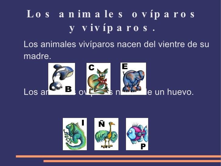carnívoros/herbívoros.