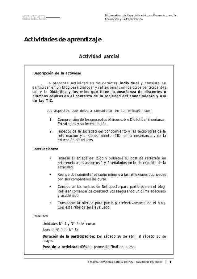 11111Pontificia Universidad Católica del Perú - Facultad de Educación Diplomatura de Especialización en Docencia para la F...