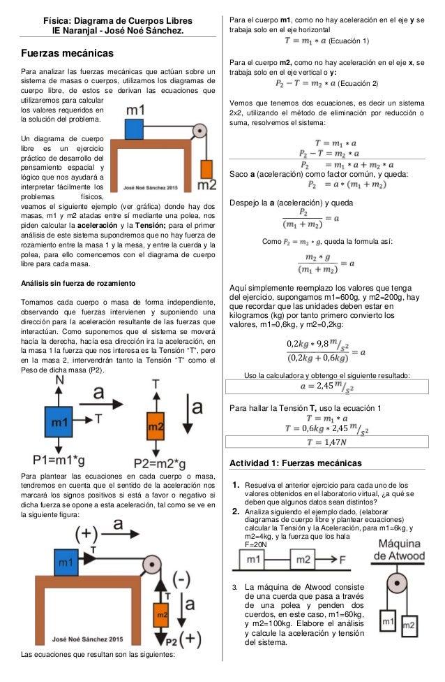 Dorable Diagramas Del Sistema Cuerpo Cresta - Anatomía de Las ...
