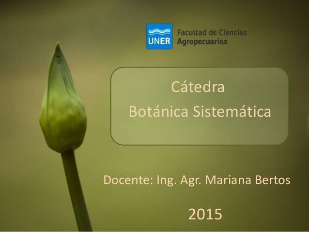 Cátedra Botánica Sistemática Docente: Ing. Agr. Mariana Bertos 2015