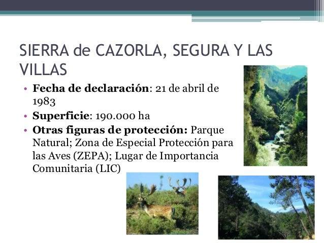 Sierra de Cazorla, Segura y las Villas