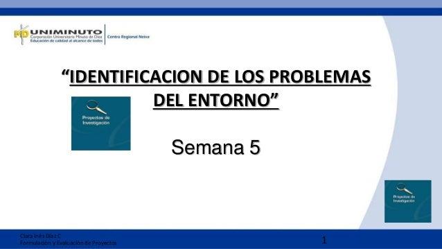 """1 """"IDENTIFICACION DE LOS PROBLEMAS DEL ENTORNO"""" Semana 5 Clara Inés Díaz C Formulación y Evaluación de Proyectos"""