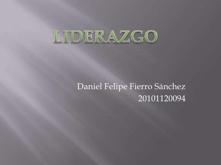 Daniel Felipe Fierro Sánchez                20101120094