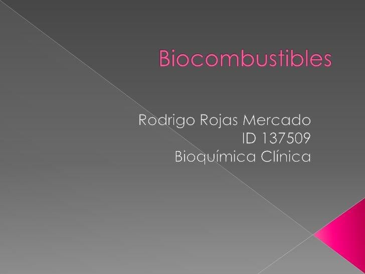 Biocombustibles<br />Rodrigo Rojas Mercado<br />ID 137509<br />Bioquímica Clínica<br />
