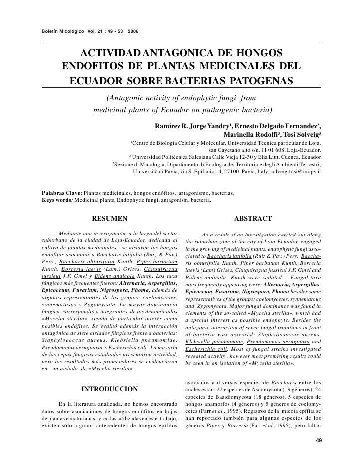 Boletín Micológico Vol. 21 : 49 - 53   2006               ACTIVIDAD ANTAGONICA DE HONGOS         ENDOFITOS DE PLANTAS MEDI...