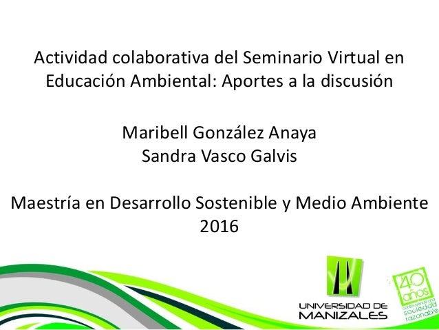 Actividad colaborativa del Seminario Virtual en Educación Ambiental: Aportes a la discusión Maribell González Anaya Sandra...