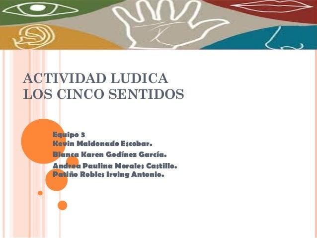 ACTIVIDAD LUDICA LOS CINCO SENTIDOS Equipo 3 Kevin Maldonado Escobar. Blanca Karen Godínez García. Andrea Paulina Morales ...