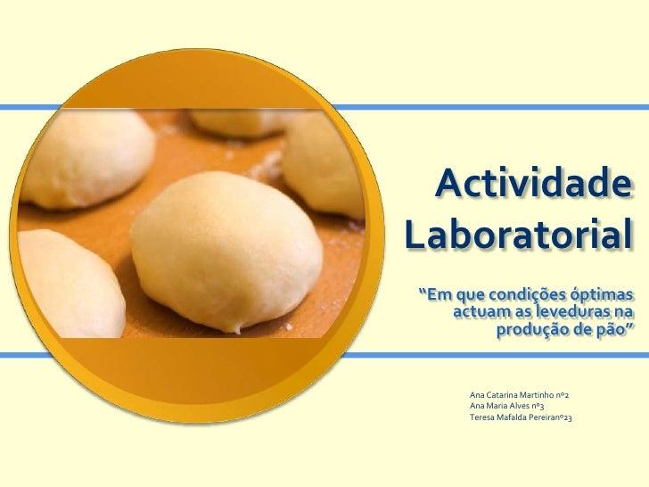 """ActividadeLaboratorial""""Em que condições óptimas   actuam as leveduras na         produção de pão""""     Ana Catarina Martinh..."""