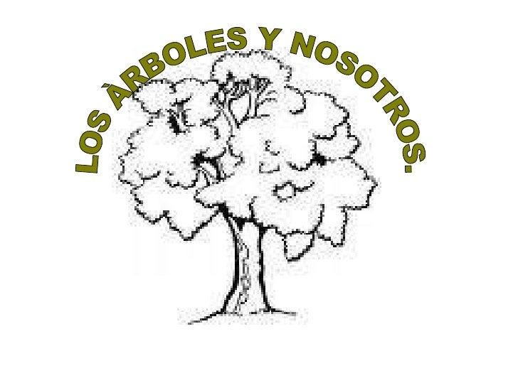 LOS ÀRBOLES Y NOSOTROS.