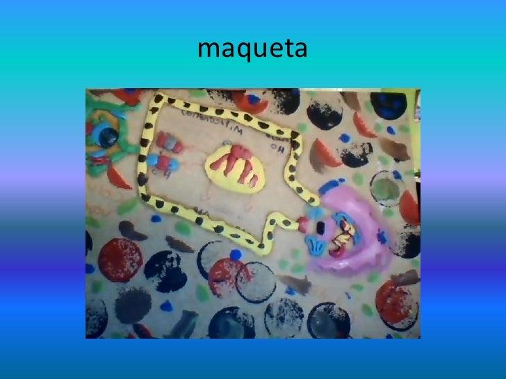 maqueta