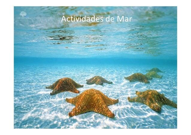 Actividades de Mar
