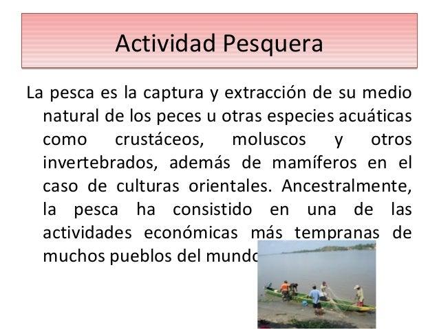 Actividades Económicas y Medio Ambiente Slide 2