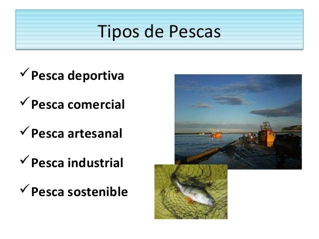 Actividades econ micas y medio ambiente - Tipos de calefaccion economica ...