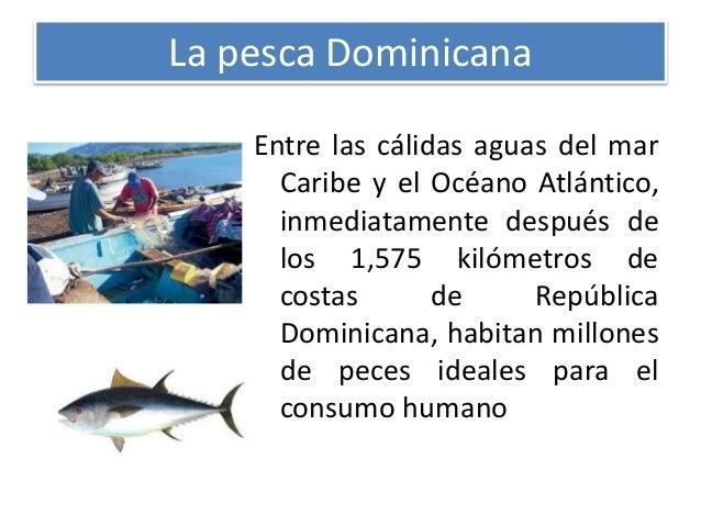 Actividades econ micas y recursos naturales en la for Cria de peces para consumo humano