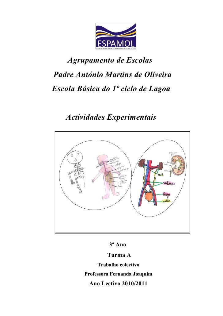 Agrupamento de EscolasPadre António Martins de OliveiraEscola Básica do 1º ciclo de Lagoa    Actividades Experimentais    ...