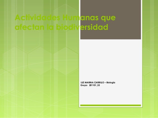 Actividades Humanas queafectan la biodiversidadLUZ MARINA CARRILLO – BiologíaGrupo 201101_53