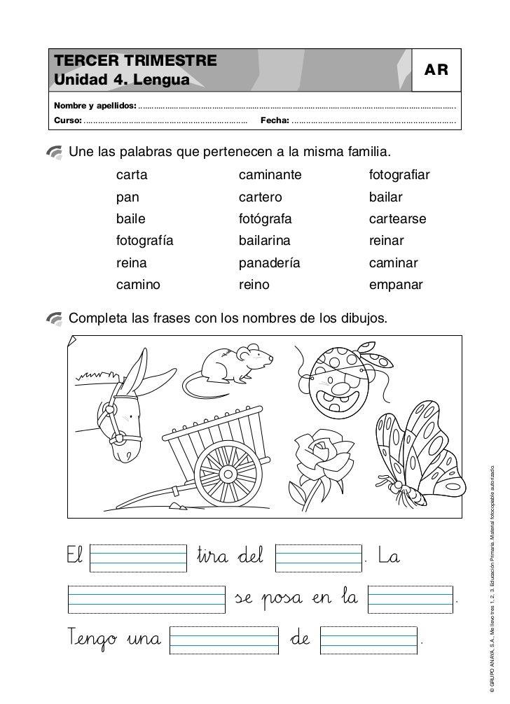Actividades primero de primaria matemáticas, lengua
