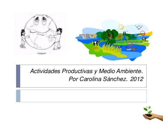 Actividades Productivas y Medio Ambiente.              Por Carolina Sánchez. 2012