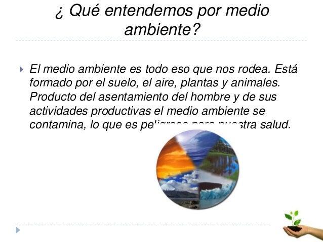 actividades productivas y medio ambiente