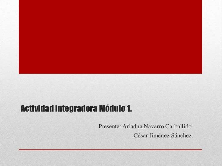 Actividad integradora Módulo 1.                     Presenta: Ariadna Navarro Carballido.                                 ...