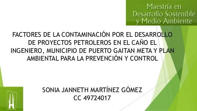 FACTORES DE LA CONTAMINACIÓN POR EL DESARROLLO DE PROYECTOS PETROLEROS EN EL CAÑO EL INGENIERO, MUNICIPIO DE PUERTO GAITAN...