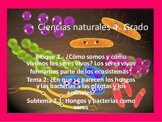 Ciencias naturales 4to. Grado Bloque 2.- ¿Cómo somos y cómo vivimos los seres vivos? Los seres vivos formamos parte de los...