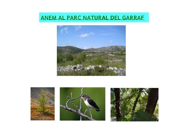 ANEM AL PARC NATURAL DEL GARRAF