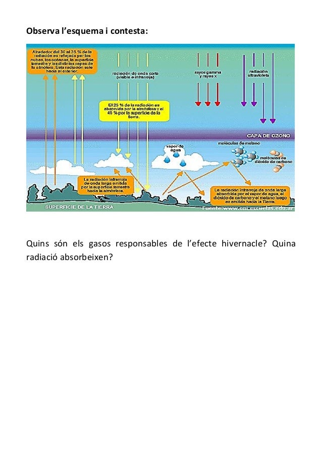 Observa l'esquema i contesta:Quins són els gasos responsables de l'efecte hivernacle? Quinaradiació absorbeixen?