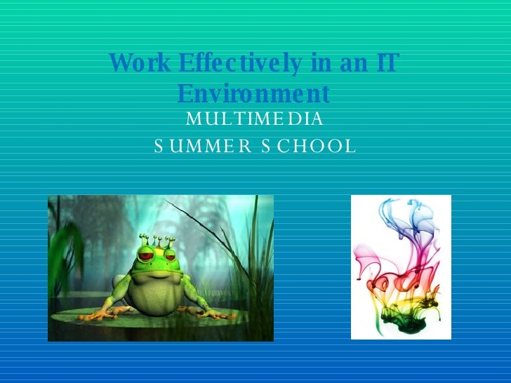 MULTIMEDIA SUMMER SCHOOL Work Effectively in an IT Environment