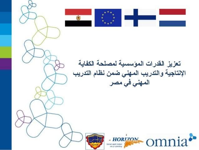 تعزيز القدرات المؤسسية لمصلحة الكفاية النتاجية والتدريب المهني ضمن نظام التدريب المهني في مصر