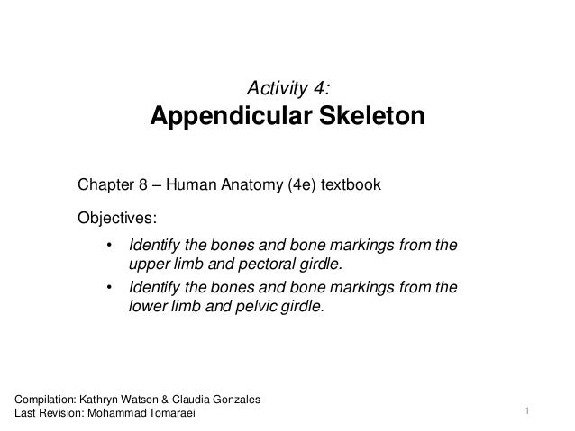 Activity 4: Appendicular Skeleton Chapter 8 – Human Anatomy (4e) textbook Objectives: • Identify the bones and bone markin...