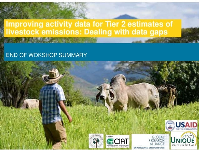 END OF WOKSHOP SUMMARY Improving activity data for Tier 2 estimates of livestock emissions: Dealing with data gaps