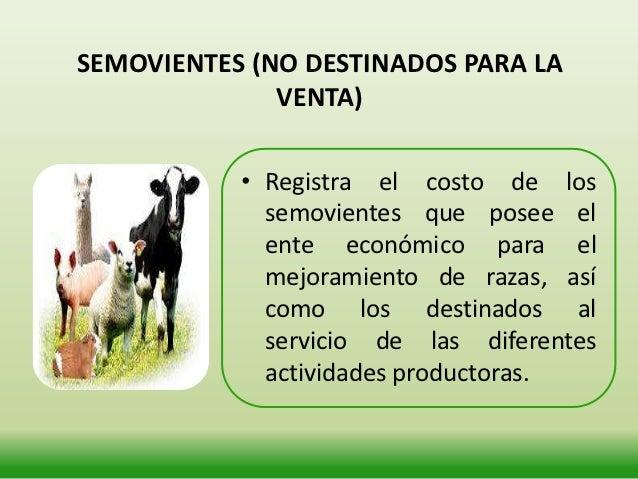 BOSQUES Y CULTIVOS (PLANTACIONES CICLO                LARGO)      • Son aquellos cultivos que van desde la        preparac...