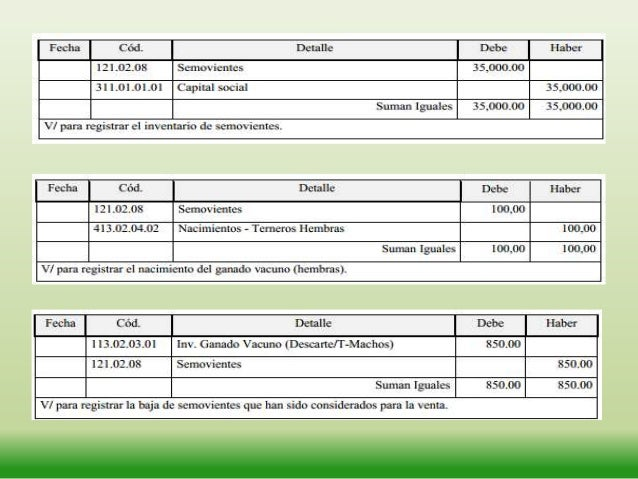 EJEMPLO• Se vende un hectárea de pasto para ganadería  por el valor de 2.000,00, nos cancelan en efectivoFECHA            ...