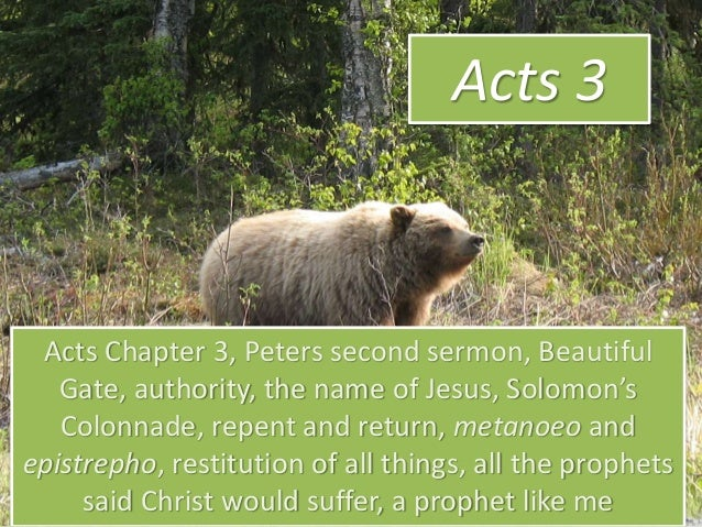 Acts 3 Acts Chapter 3, Peters second sermon, Beautiful Gate, authority, the name of Jesus, Solomon's Colonnade, repent and...
