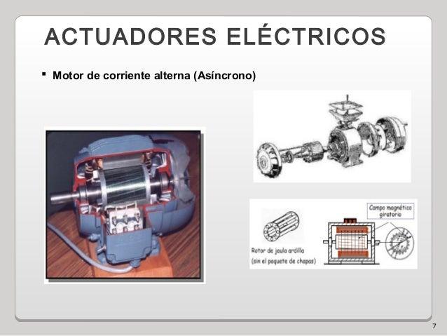 7 ACTUADORES ELÉCTRICOS  Motor de corriente alterna (Asíncrono)