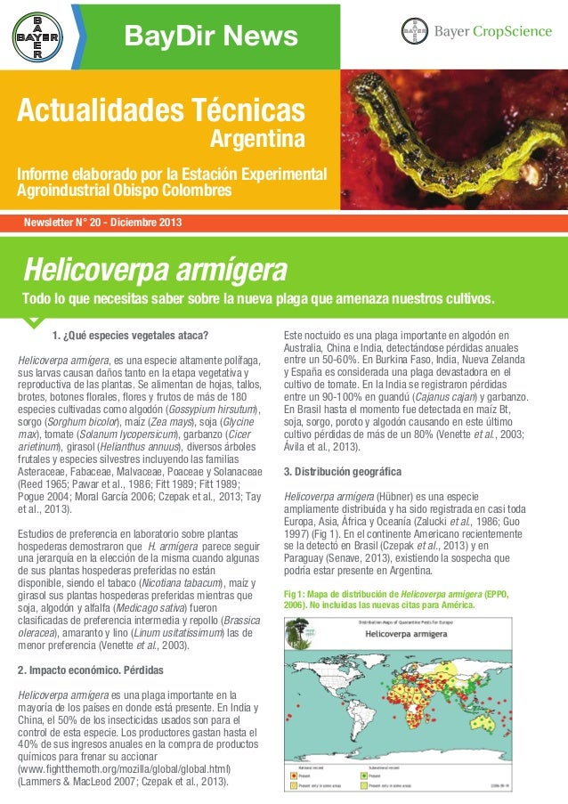 BayDir News  Actualidades Técnicas Argentina  Informe elaborado por la Estación Experimental Agroindustrial Obispo Colombr...