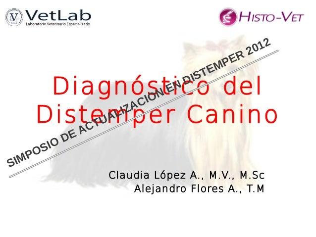 Diagnóstico delDistemper CaninoClaudia López A., M.V., M.ScAlejandro Flores A., T.MSIMPOSIO DE ACTUALIZACION EN DISTEMPER ...