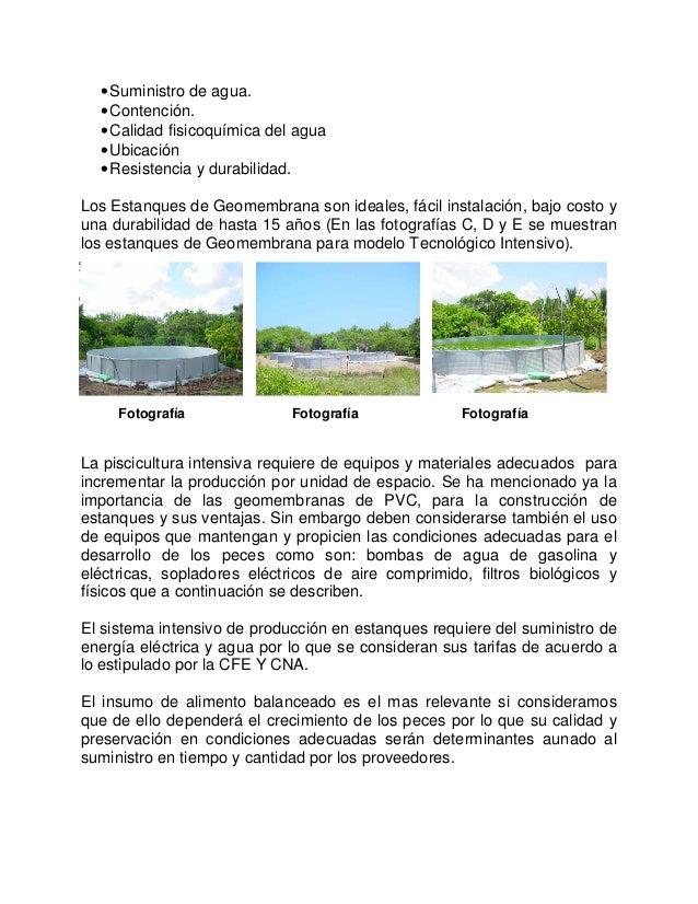 Acuacultura for Geomembrana para estanques de agua