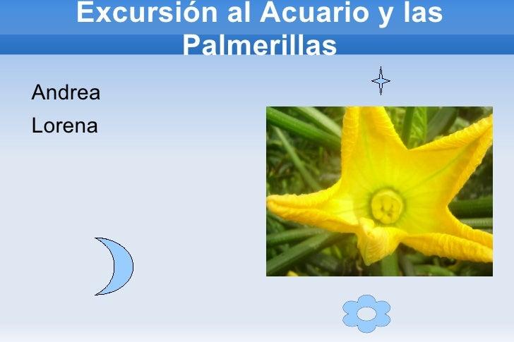 Excursión al Acuario y las Palmerillas <ul><li>Andrea