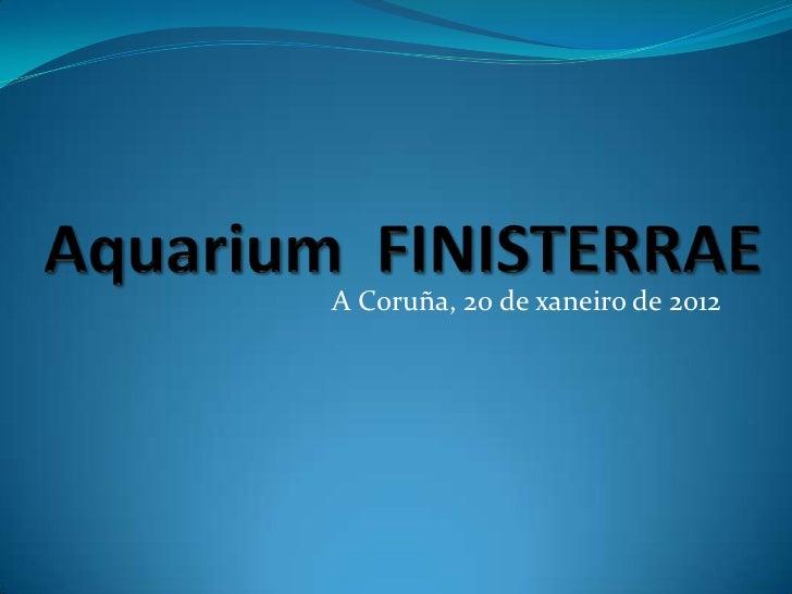 A Coruña, 20 de xaneiro de 2012