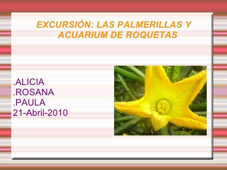 EXCURSIÓN: LAS PALMERILLAS Y ACUARIUM DE ROQUETAS .ALICIA .ROSANA  .PAULA 21-Abril-2010