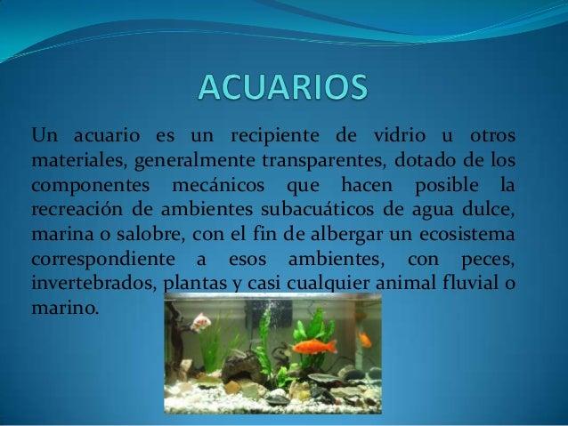 Un acuario es un recipiente de vidrio u otros materiales, generalmente transparentes, dotado de los componentes mecánicos ...