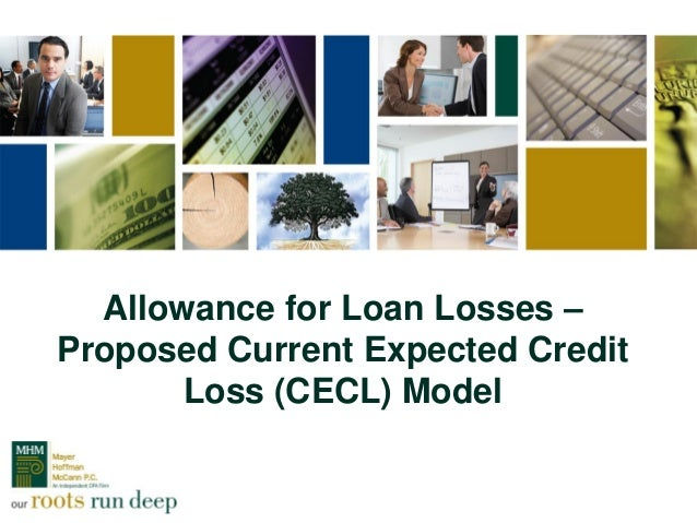 Allowance for Loan Losses – Proposed Current Expected Credit Loss (CECL) Model