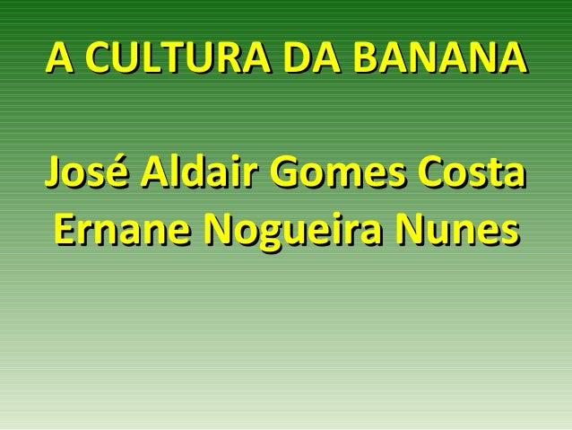 A CULTURA DA BANANAJosé Aldair Gomes CostaErnane Nogueira Nunes